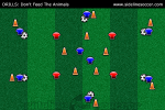 Don't Feed The Animals Soccer Drill