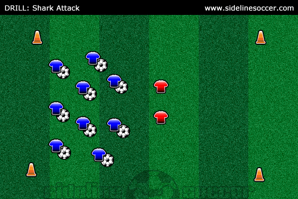 Shark Attack Soccer Drill